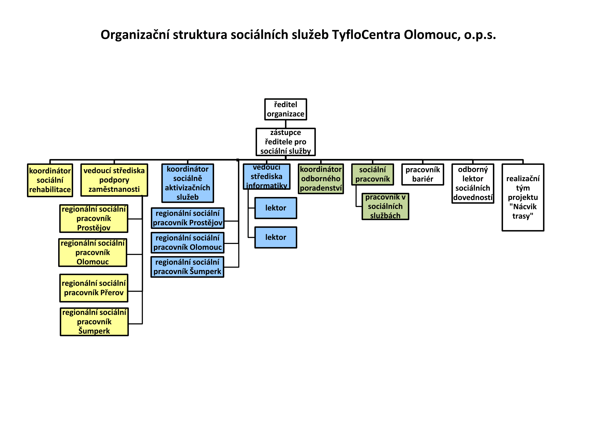 Organizační struktura sociální firmy Ergones - Tyflocentrum Olomouc, o.p.s.